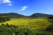 辽宁新宾:垃圾零填埋 美了村庄护了生态