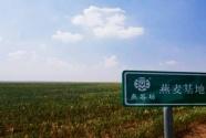 燕谷坊集團:升華地方特色產業的強本扶貧之路