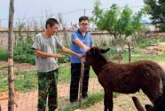 """内蒙古:村里来了群""""住村""""干部"""