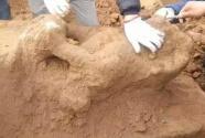 河北巨鹿发现北宋时期房屋建筑遗存