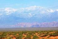 新疆阿克苏地区生态治理纪实