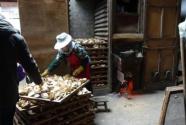 贝店与庆元县政府达成战略合作,一县一品助力庆元香菇走出深山