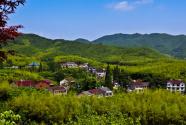"""""""矿山""""变""""青山"""" """"危山""""变""""金山""""——一个湘南山村的生态转型探索"""