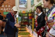 甘肃陇南茶文化旅游节开幕
