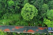 福州:绿道光谱折射幸福图景