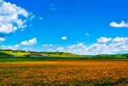 生态木兰 绿色围场
