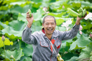 湖南株洲渌口区:优化提升农村人居环境 精心绘制乡村振兴画卷
