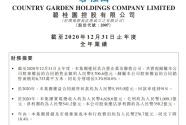 碧桂園2020年營收4629億元,凈利潤541億元 繼續穩居行業前列