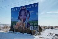 34歲從央企辭職后,她決定回家種大米
